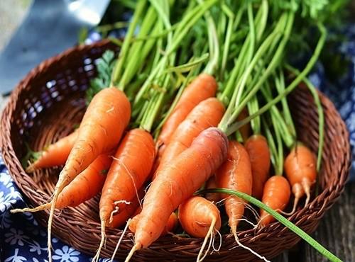 giảm cân bằng rau củ quả luộc, giảm cân bằng rau củ luộc, thực đơn giảm cân bằng rau củ luộc, thực đơn giảm cân bằng rau luộc, các loại rau củ luộc giảm cân, ăn rau củ luộc giảm cân, giảm cân với rau củ quả luộc, rau củ quả luộc giảm cân, thực đơn giảm cân với rau củ quả, thực đơn giảm cân bằng rau củ quả luộc, rau củ quả luộc giúp giảm cân, giảm cân hiệu quả bằng rau củ quả, cách giảm cân bằng rau luộc, ăn rau luộc chấm gì để giảm cân, rau củ luộc giảm cân, ăn rau luộc giảm cân, rau luộc giảm cân, các món rau luộc giảm cân, các món luộc giảm cân, các loại rau luộc giảm cân, ăn rau luộc có giảm cân không, thực đơn giảm cân với rau luộc, giảm cân với rau luộc, ăn đồ luộc giảm cân, giảm cân bằng rau luộc, ăn đồ luộc có giảm cân không, đồ luộc giảm cân, thực đơn rau luộc giảm cân, nước chấm rau luộc giảm cân, thực đơn giảm cân với đồ luộc, những loại rau luộc giúp giảm cân, món luộc giảm cân, những món luộc giảm cân, rau luộc chấm gì để giảm cân, thực đơn rau củ luộc giảm cân, những món rau luộc giảm cân, thực đơn món luộc giảm cân, rau gì luộc giảm cân, ăn rau luộc mỗi ngày, các món rau luộc, các món hấp luộc giảm cân, các loại rau luộc ăn giảm cân, chỉ ăn đồ luộc, các loại rau luộc, rau củ luộc, củ quả luộc, rau củ quả luộc, ăn đồ luộc có tốt không, rau luộc, bắp cải luộc giảm cân, rau luộc bao nhiêu calo, món rau luộc, nước chấm rau cải luộc, 1 đĩa rau cải luộc bao nhiêu calo, các món rau củ luộc, ăn bầu luộc có giảm cân không