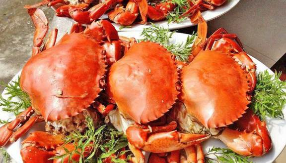 ăn bạch tuộc có mập không, ăn hải sản có béo không, ăn hải sản có mập không, ăn bạch tuộc có béo không, ăn hải sản ban đêm có mập không, ăn cua có mập ko, hải sản có béo không, bạch tuộc bao nhiêu calo, ăn nhiều hải sản có béo không, ăn hải sản nhiều có mập không, ăn hải sản có tăng cân không, ăn cua có béo k, ăn mực có béo không, ăn mực có mập ko, béo san, ăn hải sản mập không, béo không, có mập không, ăn ghẹ có béo không, ăn hải sản có béo ko, ăn cua có mập không, có béo không, ăn cá có béo không, dụng cụ ăn hải sản, bạch tuộc chứa bao nhiêu calo, hải sản bao nhiêu calo, ăn nhiều nhưng không mập, ăn cua có tăng cân, ăn cua có béo ko, ăn tôm luộc có mập không, ăn hàu có béo không, ăn mực có béo ko, 100g bạch tuộc bao nhiêu calo, ăn hàu nướng có béo không, lượng calo trong hải sản, ăn tôm có mập ko, ăn bạch tuộc sống có tốt không, ăn chè có mập không, ăn thơm có giảm cân không, ăn tiết có béo không, ăn mực có tăng cân không, ăn hải sản có mập ko, calo trong hải sản, ăn cơm đêm có tốt không, đêm ăn gì không béo, ăn đêm có mập không, những món ăn đêm không béo, video ăn hải sản, ăn nho có béo không, hải sản là gì, ăn cam có béo không, ăn na có béo không, hải sản, ăn hải sản sống , ăn ghẹ có mập, ăn nhiều cá có béo không, ăn cá có tăng cân không, ăn bạch tuộc có tốt không, ăn cá nhiều có béo không, ăn cá nướng có mập không, ăn hải sản béo không, ăn hải sản buổi tối có tốt không, ăn cháo mập không, ăn cá có mập không, ăn tôm có béo không, ăn khô mực có mập ko, những đồ ăn không béo, ăn tôm có mập không, những món ăn tối không mập, ăn đêm có béo không, ăn nhiều thức ăn có béo không, ăn hải sản nhiều có tốt không , béo lên, ăn mực có tốt không, ăn đêm nhiều có tốt không, ăn cá kho có béo không, ăn nhiều không mập, giảm 1kg trong 1 đêm, ăn nhiều nhưng không béo , hải béo, không lời, sau sinh ăn mực được không, ăn đêm có tăng cân không, ăn đêm không béo , ăn đêm có tốt không, video cách hấp cua biển, cách giảm bớt nọng cằm, 100g cá hồi bao nhiêu calo, người mập béo, ăn đêm 