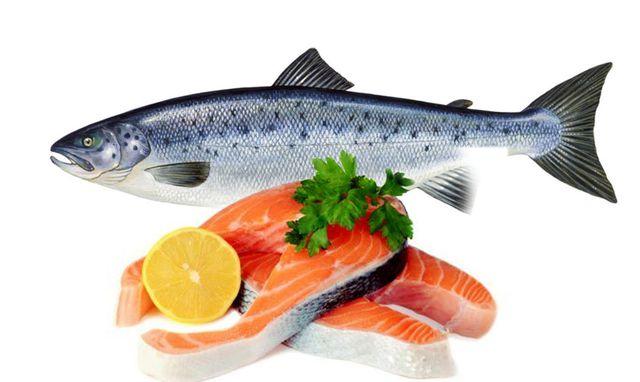 Ăn cá hồi có giảm cân không, ăn hải sản có béo không, ăn hải sản có mập không, ăn hải sản nhiều có tốt không, ăn hải sản có tốt không, ăn nhiều hải sản có béo không, ăn hải sản béo không, hải sản có béo không, ăn hải sản có bị béo không, hải sản không tốt cho sức khỏe, ăn hải sản tốt không, ăn hải sản mập không, hải sản có mập không, an hải sản có béo không, ăn hải sản nhiều có béo không, ăn hải sản nhiều có mập không,