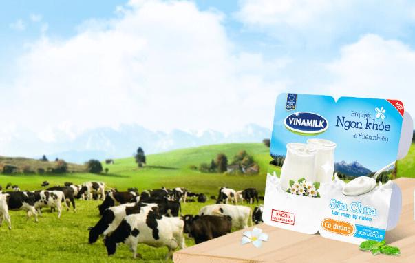 1 hộp sữa chua vinamilk bao nhiêu calo, 1 hộp sữa chua vinamilk không đường bao nhiêu calo, 1 hộp sữa chua vinamilk có đường bao nhiêu calo, 1 hộp sữa vinamilk không đường bao nhiêu calo, sữa chua vinamilk bao nhiêu calo