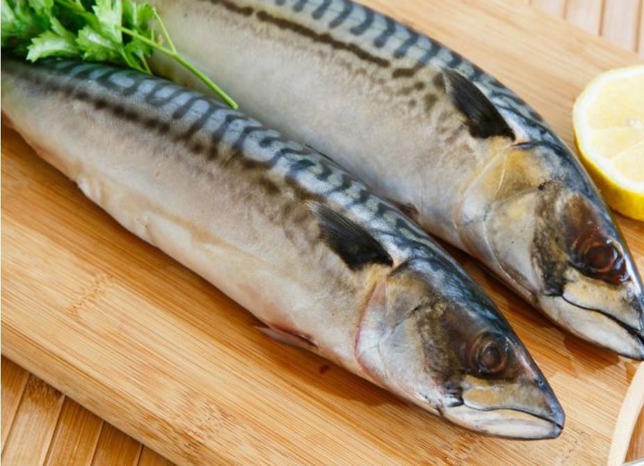 ăn cá thu có tốt không, ăn cá thu có giảm cân không, ăn cá thu có tốt cho bà bầu không, ăn cá thu có tác dụng gì, ăn cá thu bị ngứa, ăn cá thu có tăng cân không, trẻ em ăn được cá thu không, cá thu chiên bao nhiêu calo, cá thu có bao nhiêu calo, cá thu sốt cà chua calo, cá thu hấp bao nhiêu calo, cá thu kho bao nhiêu calo, 100g cá thu bao nhiêu calo, chả cá thu bao nhiêu calo, calo trong cá thu rán, 1 lát cá thu bao nhiêu calo