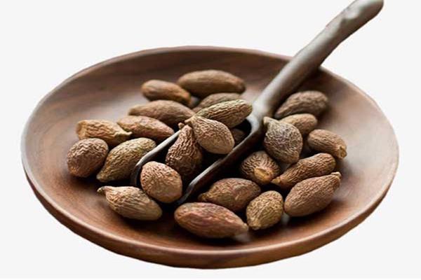 hạt đười ươi có giảm cân không, hạt ươi giảm cân, hạt đười ươi ăn như thế nào, cách ăn hạt đười ươi, hạt đười ươi tác dụng, ăn hạt đười ươi có tác dụng gì, hạt đười ươi giá bao nhiêu, hạt đười ươi mua ở đâu, mua hạt đười ươi ở đâu, mua hạt đười ươi, mua hạt đười ươi ở hà nội, hạt đười ươi