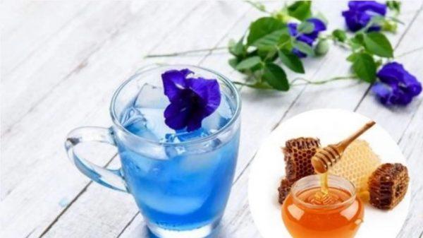 trà hoa đậu biếc giảm cân, cách làm trà hoa đậu biếc, cách nấu trà hoa đậu biếc, cách làm trà hoa đậu biếc tươi, cách làm trà hoa đậu biếc khô, cách pha chế trà hoa đậu biếc, làm trà hoa đậu biếc, cách pha trà hoa đậu biếc, hướng dẫn làm trà hoa đậu biếc, trà hoa đậu biêc, nấu trà hoa đậu biếc, trà hoa đậu, cách pha trà hoa đậu biếc ngon, cách pha trà hoa đậu biếc tươi, cách chế biến trà hoa đậu biếc, hoa đậu biếc giảm cân